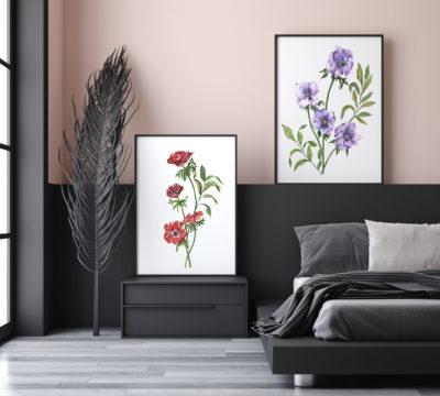 Anemone - Atelier Palel