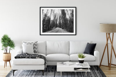 Yosemite Trees - Atelier Palel